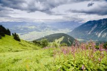 Germania, Baviera, Veduta della valle con le Alpi — Foto stock