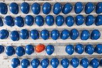 Filas de cascos de seguridad azules y naranjas en estantes - foto de stock
