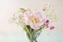 Свежие срезанные различные цветы в вазе — стоковое фото