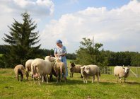 Mature woman caressing sheep on farm — Stock Photo