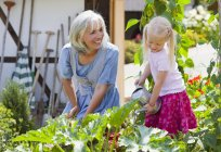 Mature woman and girl in graden caring for plants — Stock Photo