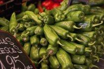 Зеленый перец с ценником — стоковое фото