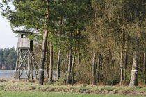 Germany, Bavaria, raised hide in forest during daytime — Stock Photo