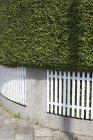 Германия, Бавария, Мюнхен, изгородь с забором днем — стоковое фото