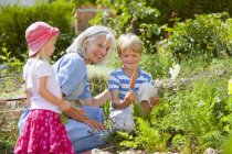 Grandmother with children inspecting carrots in garden — Stock Photo