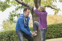 Father helping son climbing on tree — Stock Photo