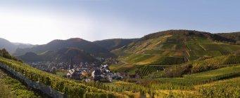 Deutschland, rheinland-pfalz, blick auf weindorf mit weinbergen im ahr-tal — Stockfoto