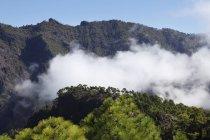 Il cloud tra le montagne — Foto stock