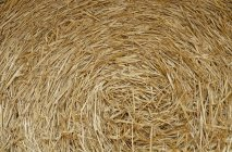Close up of bale of yellow dried hay — Stock Photo