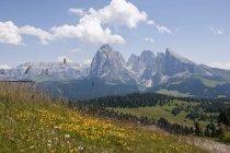 Italien, Almwiese auf Langkofel und Plattkofels Berge in Südtirol — Stockfoto