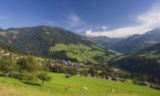 Alpbachtal-Tal mit ländlichen Häusern — Stockfoto
