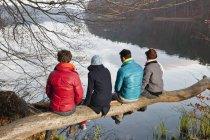 Deutschland, Berlin, Wandlitz, Männer und Frauen sitzen auf Ast — Stockfoto