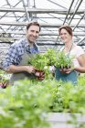 Man and woman in greenhouse with rocket plants — Stock Photo