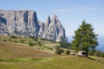 Alpine meadow with Schlern and Santner peaks — Stock Photo