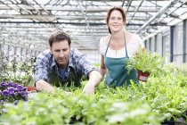 Man and woman standing with rocket plants — Stock Photo
