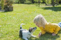 Boy playing with Jack Russel Terrier — Stock Photo