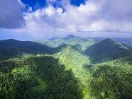 Карибские острова, Антильские острова, Малые Антильские острова, Сент-Люсия, Кресслендс, Вид с воздуха на первобытные леса и горы — стоковое фото