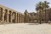 Єгипет, Луксор, вид на храм на Карнаке денний час — стокове фото