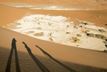 Africa, Namibia, Sossusvlei,and beach with shades  during daytime — Stock Photo