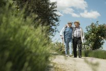 Two old friends walking in the park — Stock Photo