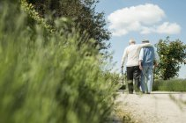 Rear view of two old friends walking in the park, back view — Stock Photo