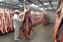 Açougueiro que verifica o lado de porco no armazém frio de um matadouro — Fotografia de Stock