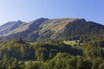 Montagne Kanisfluh et forêt de Bregenz, région de Bregenzerwald, Vorarlberg, Autriche — Photo de stock