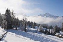 Austria, vista de Tannheim Alpes durante el día - foto de stock