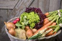 Органічні овочі в кошику на дерев'яні поверхні — стокове фото