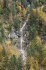 Cascade dans la forêt automnale — Photo de stock