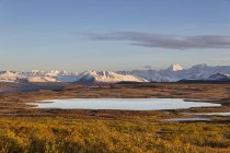 США, Аляска, вид пейзаж восени, Аляска діапазон у фоновому режимі — стокове фото