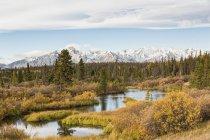 Canada, vue du fleuve Jarvis au Parc National de Kluane — Photo de stock