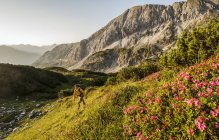 Man hiking through Niedere Tauern mountains at dawn in Salzburg, Austria — Stock Photo
