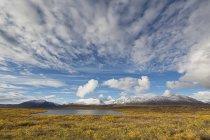 EUA, Alasca, vista da paisagem no outono, a Cordilheira do Alasca no fundo — Fotografia de Stock