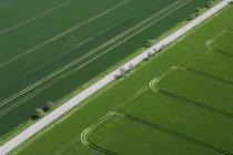 Alemania, vista de verdes campos y calle - foto de stock