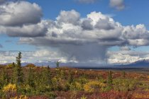 USA, Alaska, paysage le long de la route de Denali à l'automne avec la chaîne de l'Alaska — Photo de stock