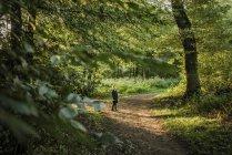 Fille debout sur le chemin forestier — Photo de stock