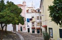 Portugal, Lisboa, Alfama, casas e laranjeiras — Fotografia de Stock