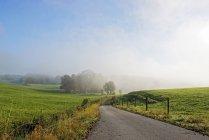 Allemagne, Bavière, Haute Bavière, paysage près de Icking à la brume du matin — Photo de stock