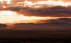 Уса, Калифорния, Дерево Джошуа, закат в дереве Джошуа — стоковое фото