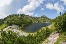 Австрія, Верхня Австрія, Зальцкаммергут, Totes Gebirge, Вілдензе, Ріннеркогель — стокове фото
