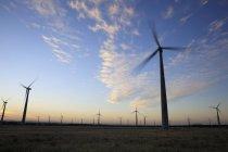 Wind farm at dusk — Stock Photo
