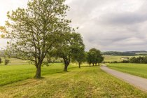 Áustria, Alta Áustria, Klam, estrada vazia ao anoitecer — Fotografia de Stock