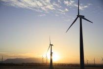 Parque eólico ao pôr-do-sol — Fotografia de Stock
