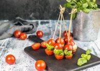 Tomato mozzarella sticks, basil — Stock Photo