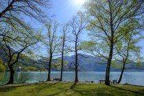 Allemagne, Bavière, Haute Bavière, Lac Kochelsee, Vue Herzogstand et Heimgarten — Photo de stock