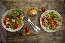 Panzanella з смаженого Циабата, ракета, червоний лук, помідори і базилік — стокове фото