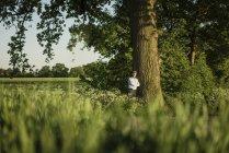 Uomo d'affari appoggiato sull'albero durante il giorno — Foto stock