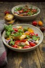 Panzanella a base di Ciabatta tostata, rucola, cipolle rosse, pomodori e basilico — Foto stock
