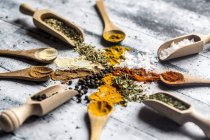 Spicies, curry, chilli, cinnamon, curcuma, garlic, parsley, oregano, salt and pepper on wooden spoons — Stock Photo